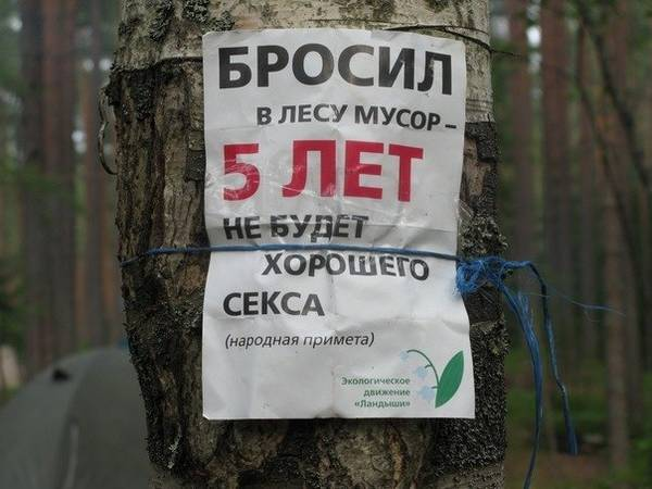 http://s1.uploads.ru/t/wiA6k.jpg
