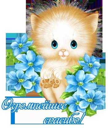 http://s1.uploads.ru/t/x4jWz.png