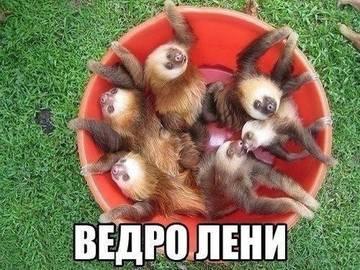 http://s1.uploads.ru/t/xHIuA.jpg