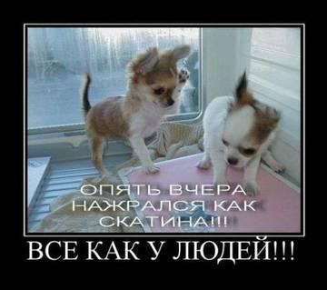 http://s1.uploads.ru/t/xNKOj.jpg