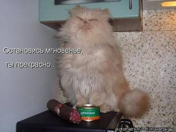 http://s1.uploads.ru/t/xy4M1.jpg
