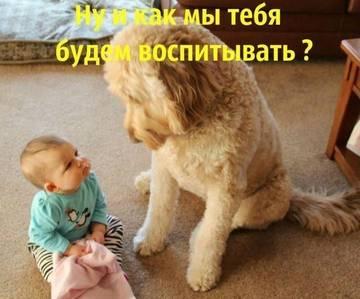 http://s1.uploads.ru/t/yFaCm.jpg