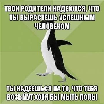 http://s1.uploads.ru/t/yzE5A.jpg