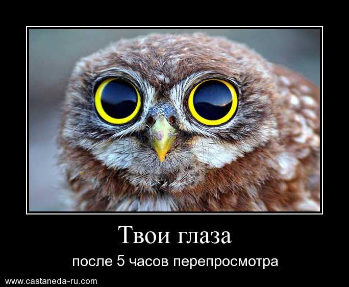 http://s1.uploads.ru/vtd7T.jpg