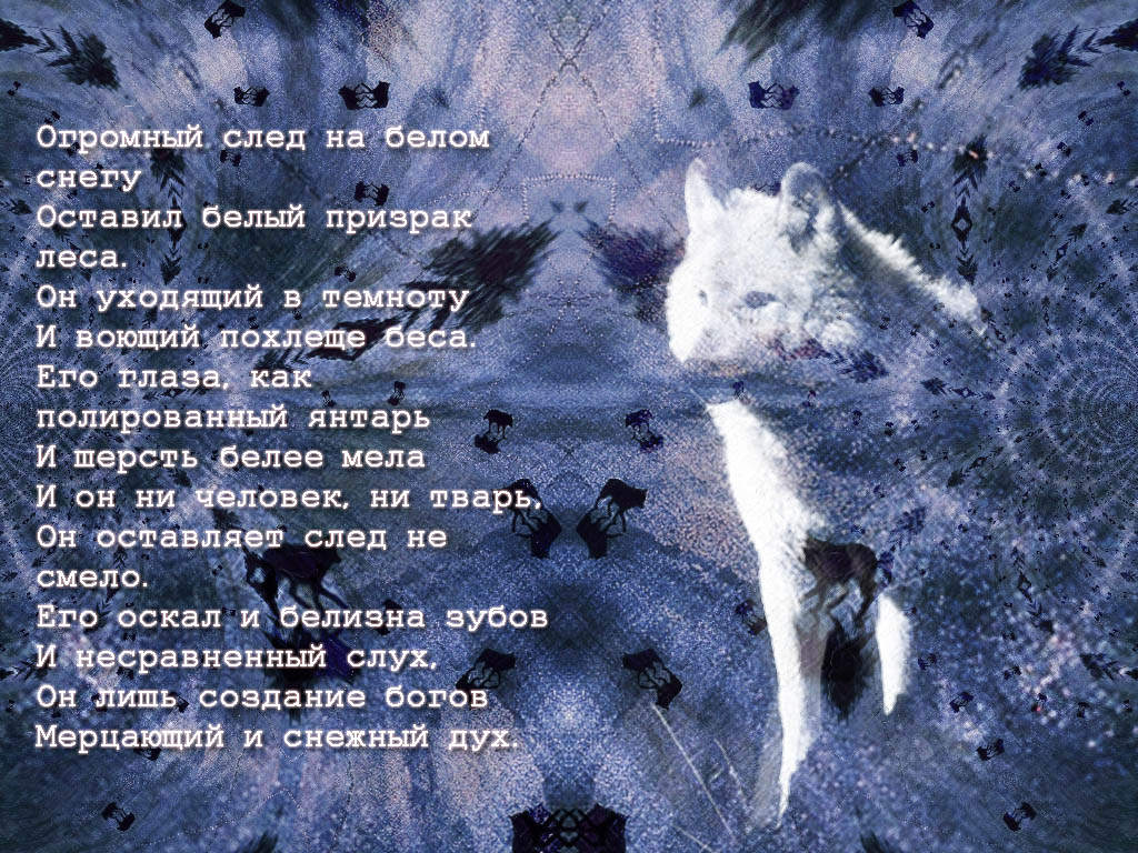 http://s1.uploads.ru/xZNhO.jpg