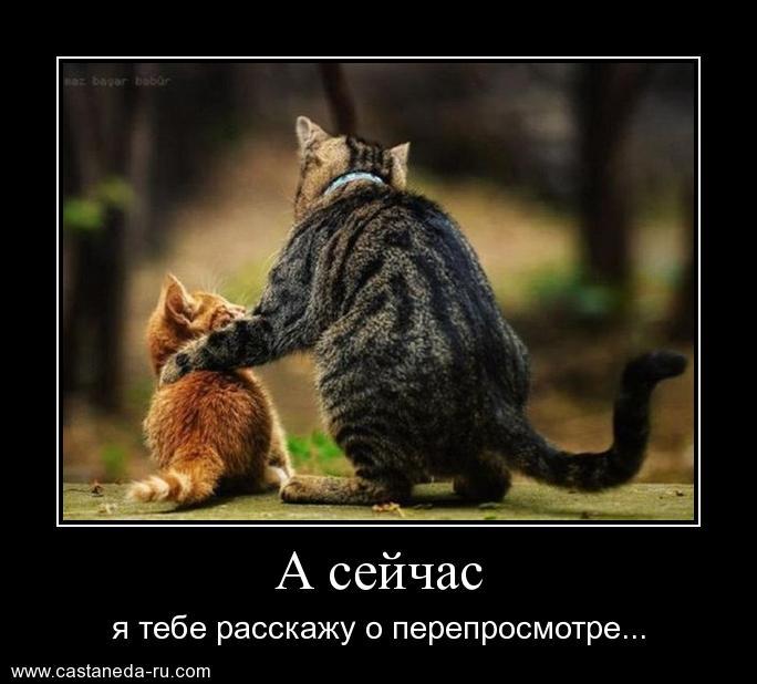 http://s1.uploads.ru/xjzGO.jpg