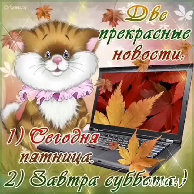http://s1.uploads.ru/zjDNQ.jpg