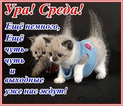 http://s1.uploads.ru/46cCS.jpg