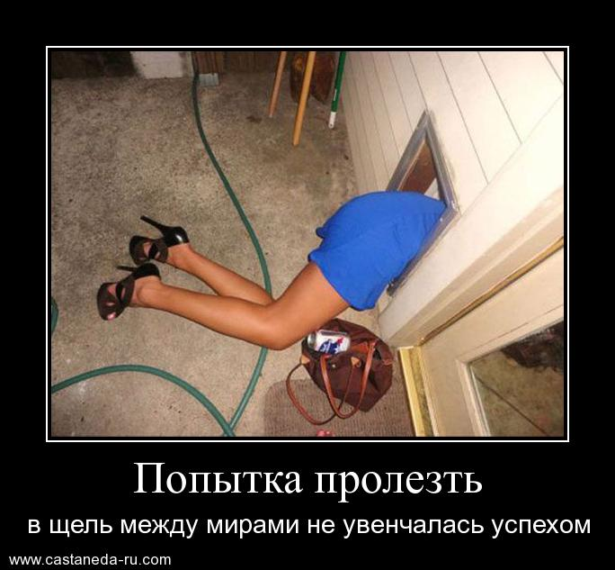 http://s1.uploads.ru/6NhFp.jpg