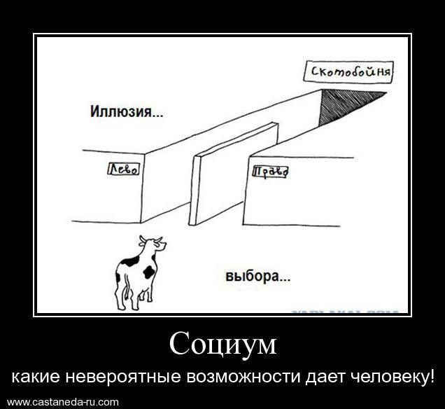 http://s1.uploads.ru/ISCmV.jpg