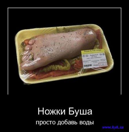 http://s1.uploads.ru/LQfki.jpg