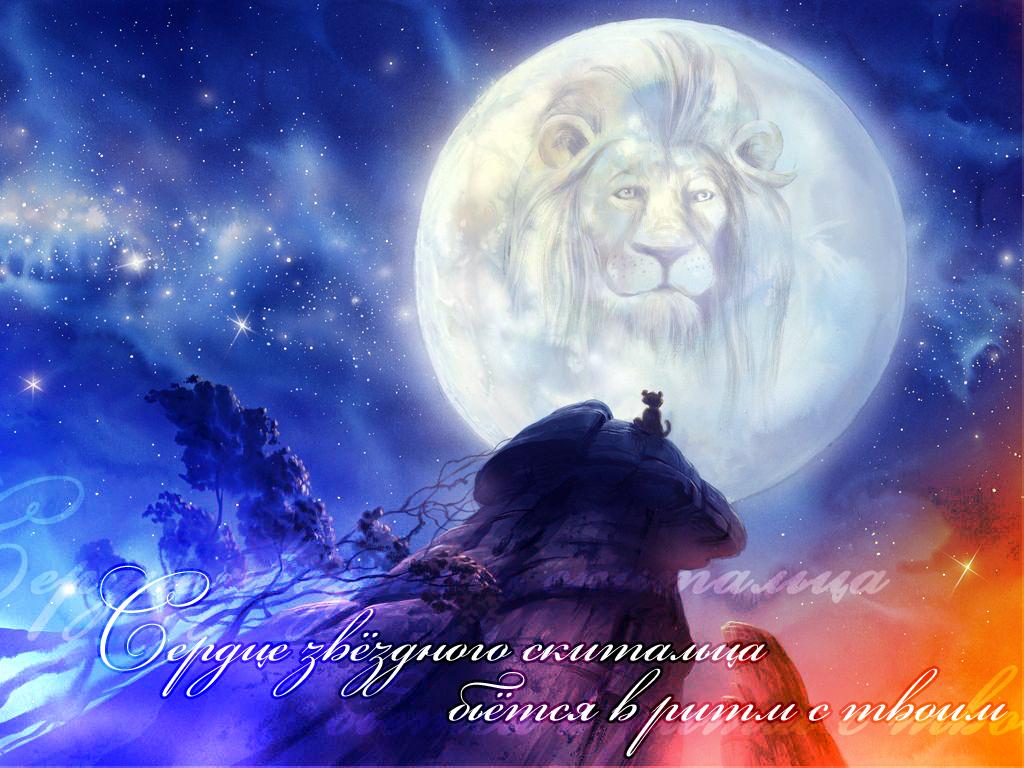 http://s1.uploads.ru/OV1nZ.jpg