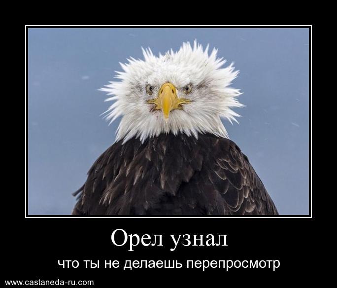 http://s1.uploads.ru/RU0vf.jpg
