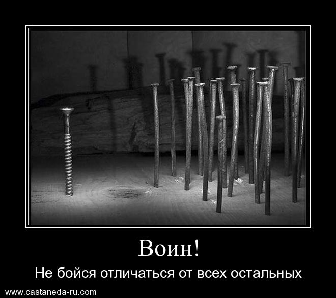 http://s1.uploads.ru/S5C2b.jpg