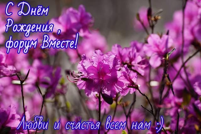 http://s1.uploads.ru/Udrhp.jpg