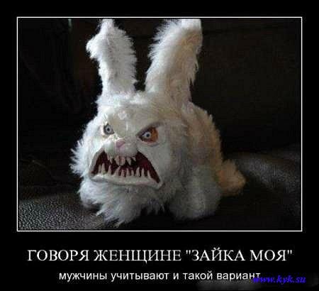 http://s1.uploads.ru/WOaZS.jpg