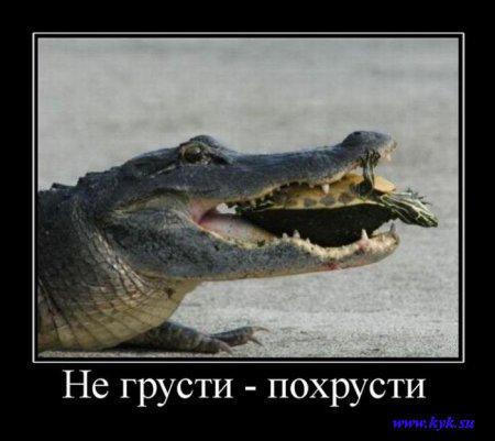http://s1.uploads.ru/eDC2q.jpg