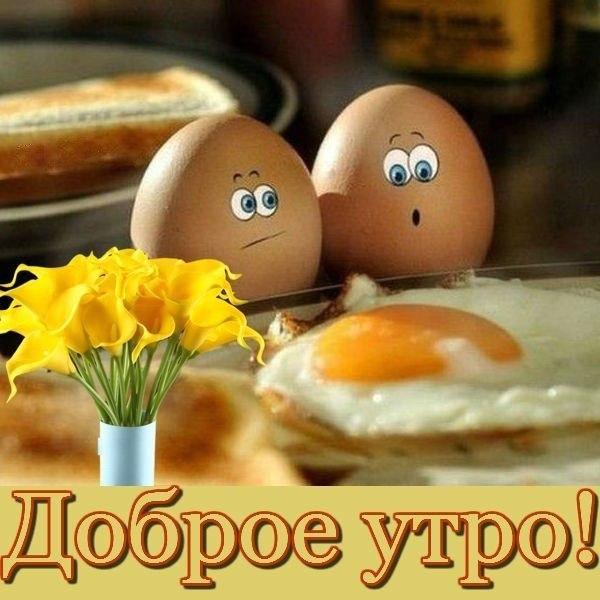 http://s1.uploads.ru/eroc1.jpg
