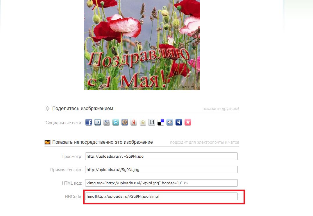 http://s1.uploads.ru/i/S8ox9.png