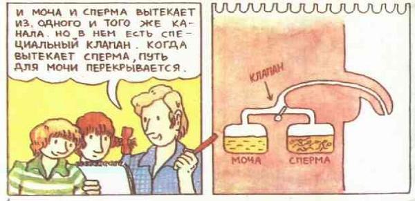 http://s1.uploads.ru/i/xtcu1.jpg