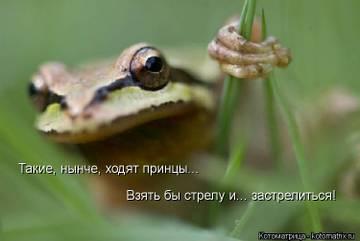 http://s1.uploads.ru/t/J7Xa5.jpg