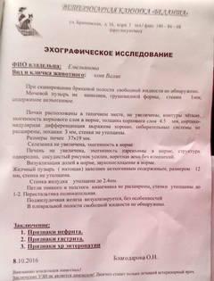 http://s1.uploads.ru/t/M1vLO.jpg