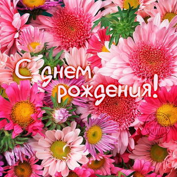 http://s1.uploads.ru/t/P2FBx.jpg