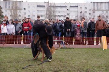http://s1.uploads.ru/t/SIwxo.jpg