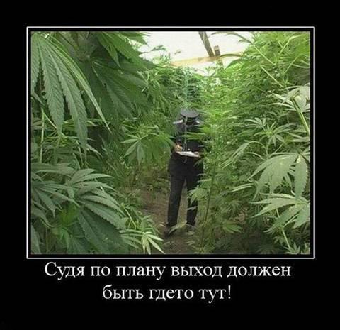http://s1.uploads.ru/t/ViRWH.jpg
