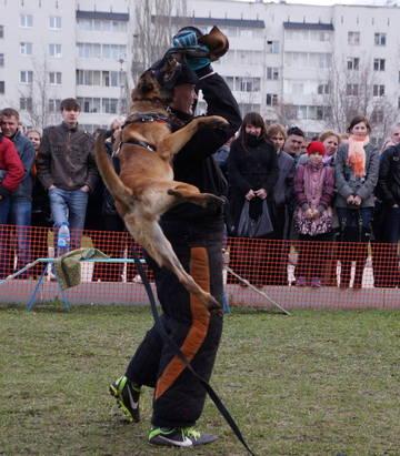 http://s1.uploads.ru/t/fgVMr.jpg