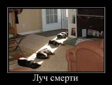 http://s1.uploads.ru/t/gIw6R.jpg