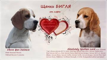 http://s1.uploads.ru/t/hRM8n.jpg