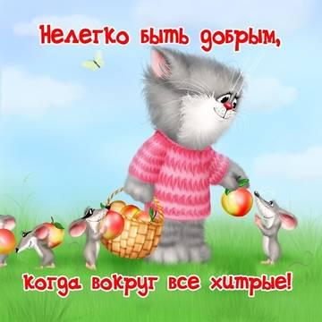 http://s1.uploads.ru/t/jdCTq.jpg