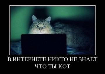 http://s1.uploads.ru/t/mzsSj.jpg