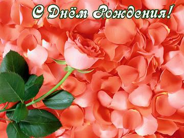 http://s1.uploads.ru/t/nQdrM.jpg