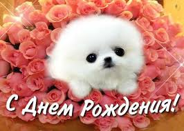 http://s1.uploads.ru/t/oVFyA.jpg