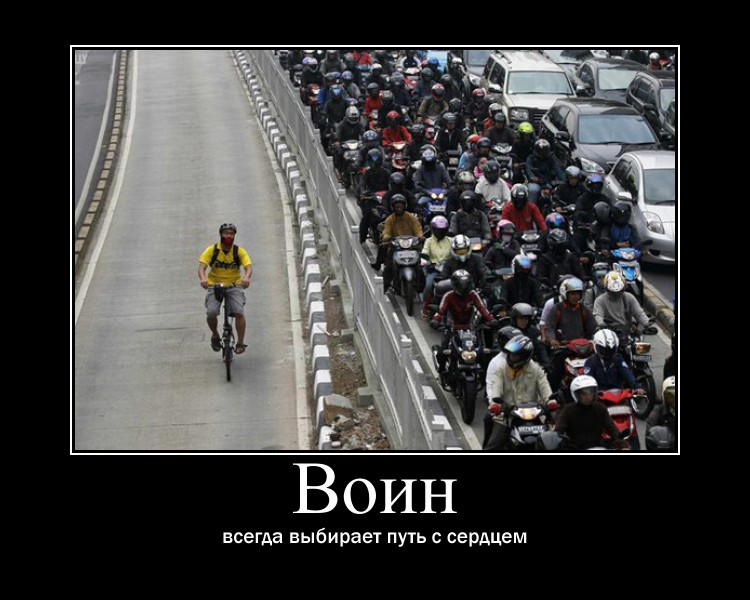http://s1.uploads.ru/w4Y05.jpg