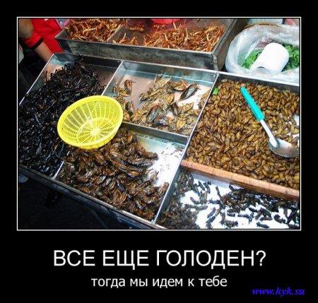 http://s1.uploads.ru/xjcUb.jpg